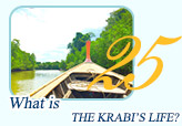 Krabi Life Package by JC Tour