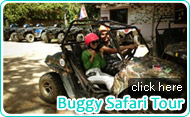 Buggy Safari Tour by JC Tour