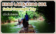Khaolak and Khaosok Safari Overnight Trip