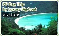 PP Day Trip by Luxury Big Boat