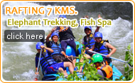 Rafting 7 KM Elephant Trekking and Fish Spa