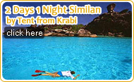 2 Days 1 Night Similan by Tent